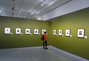 Фотогалереи в Москве. Фотовыставка в музее.